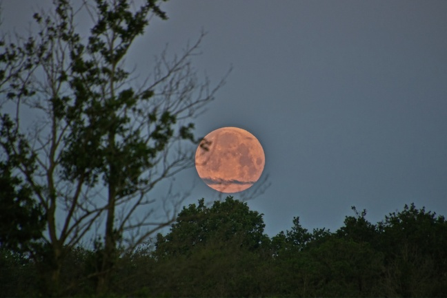 vollmond-06-06-2020.jpg
